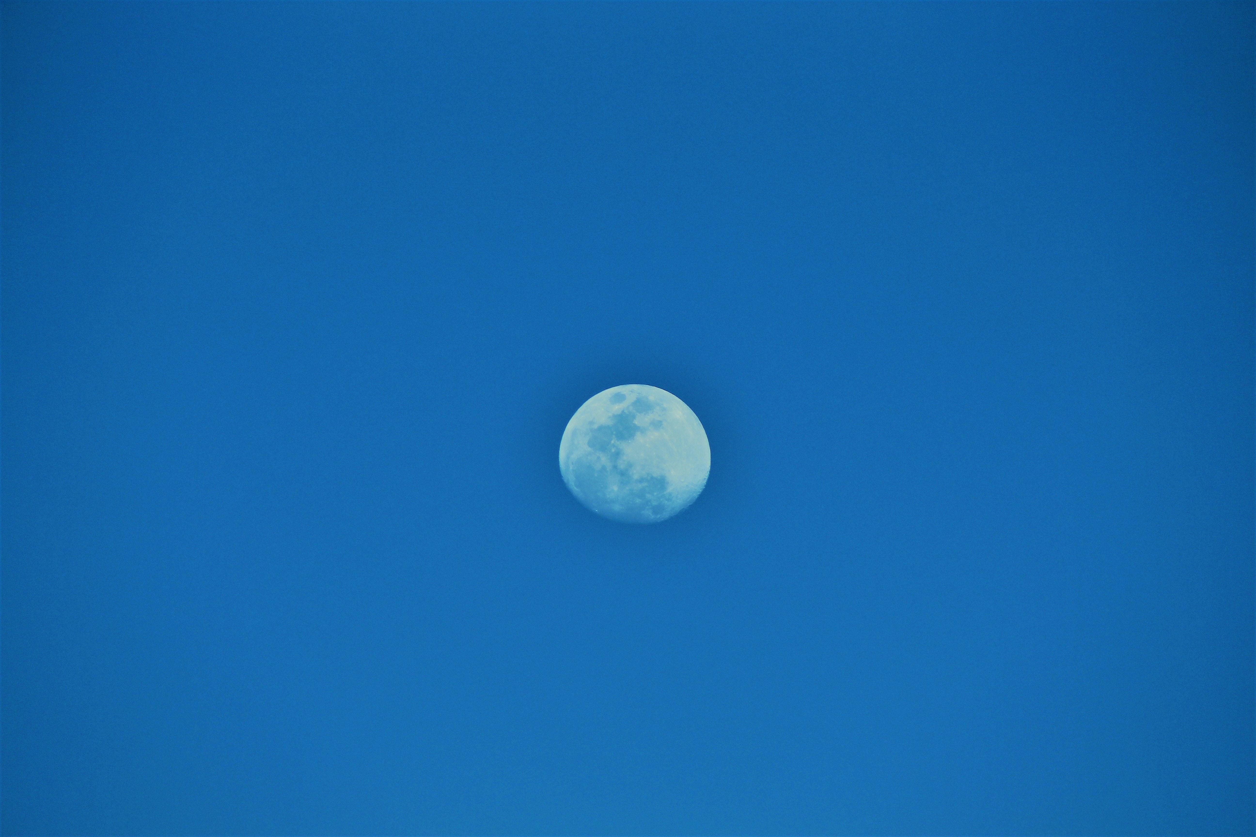 Free stock photo of blue moon, blue sky, moon