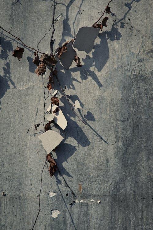 Kostenloses Stock Foto zu abstrakt, bau, beton