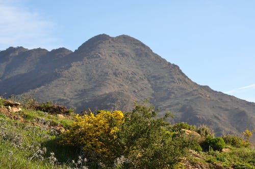 Free stock photo of estepona, mountain, nature