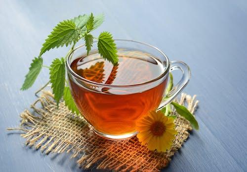 Fotos de stock gratuitas de aceites esenciales, amanecer, antioxidantes