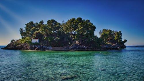 Fotos de stock gratuitas de agua, aguas azules, arboles, bahía
