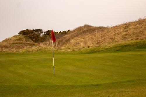 Foto d'estoc gratuïta de bandera de golf, curs de golf, forat de golf, golf
