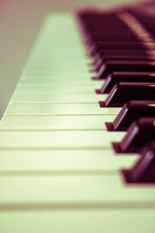 Âm nhạc, nhạc cụ, những phím đàn piano