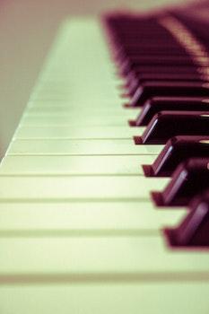 Free stock photo of music, musical instrument, piano keys