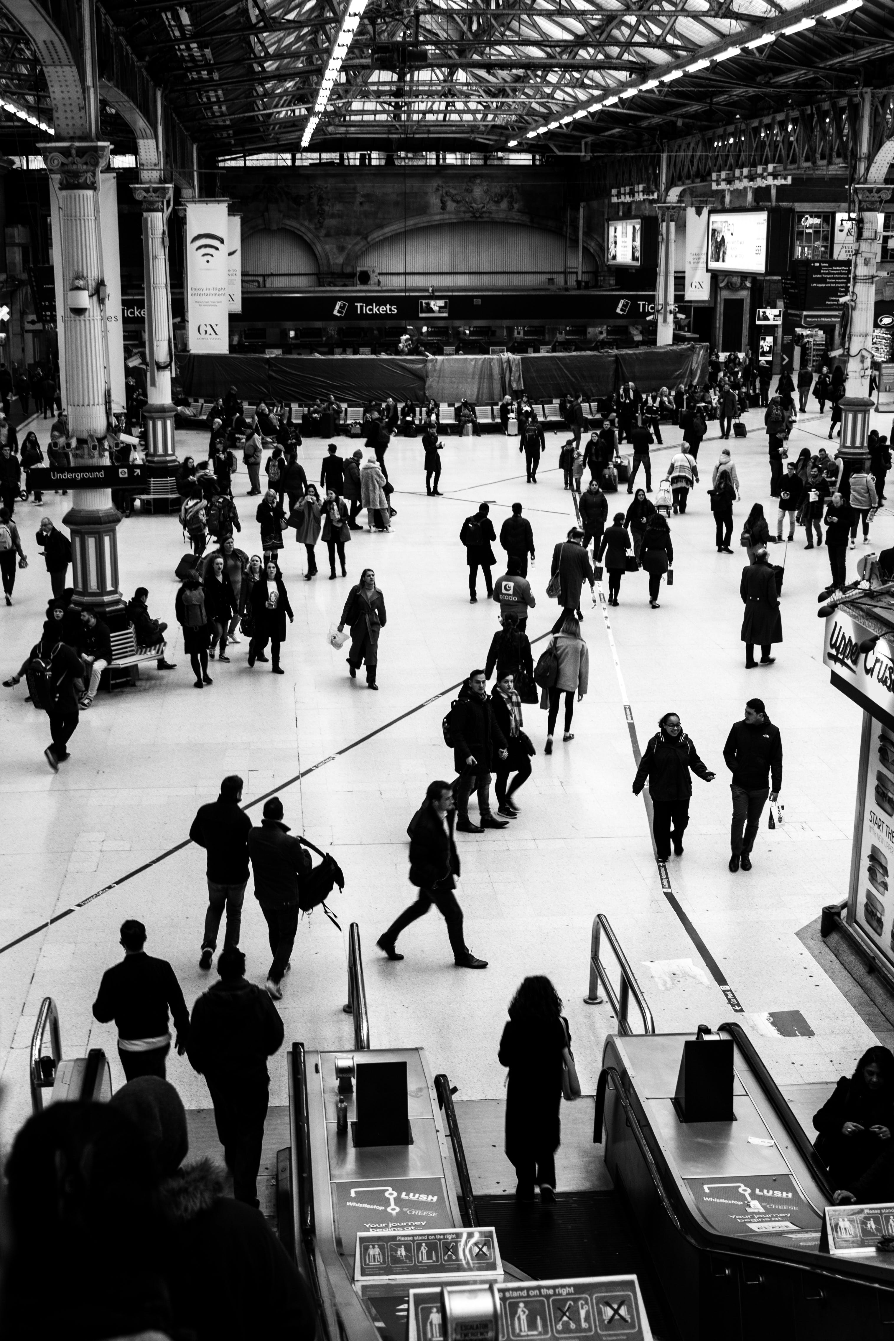 Free stock photo of people, train station