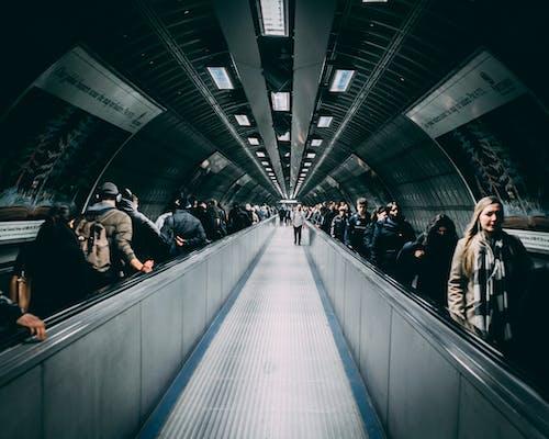 Fotos de stock gratuitas de escalera mecánica, gente, pasillo rodante, túnel