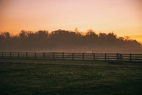 Δωρεάν στοκ φωτογραφιών με background, αγρόκτημα, αγροτικός