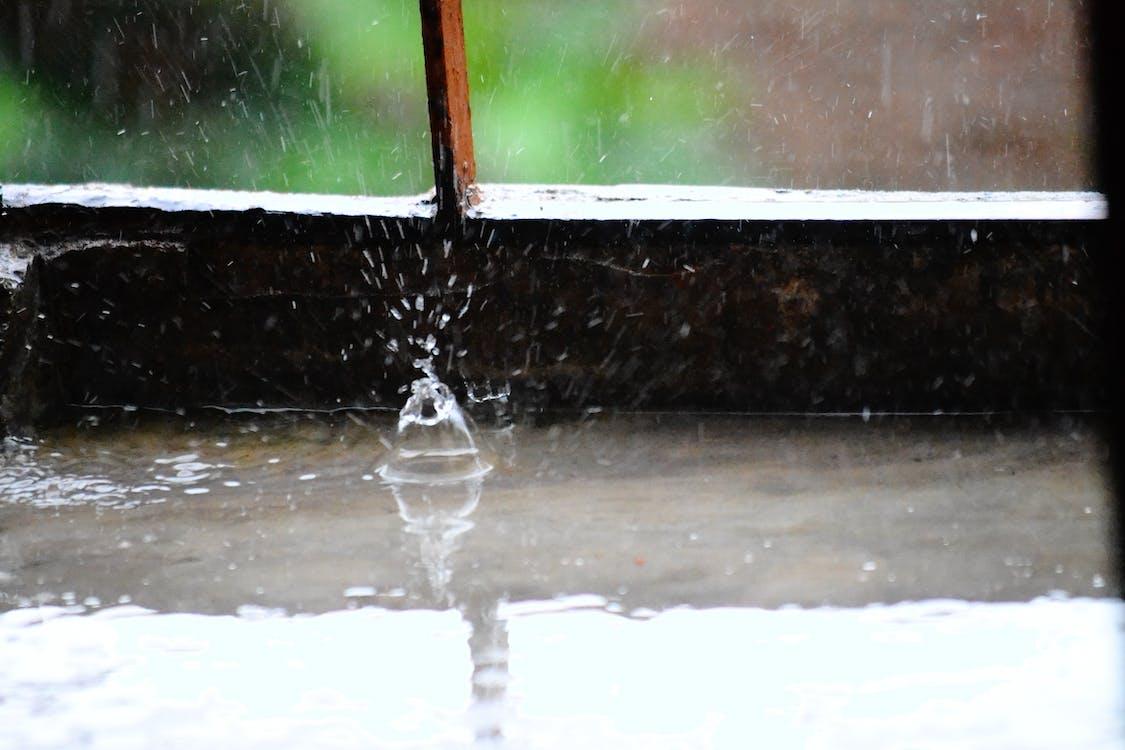 regn, regndroppe, stänk