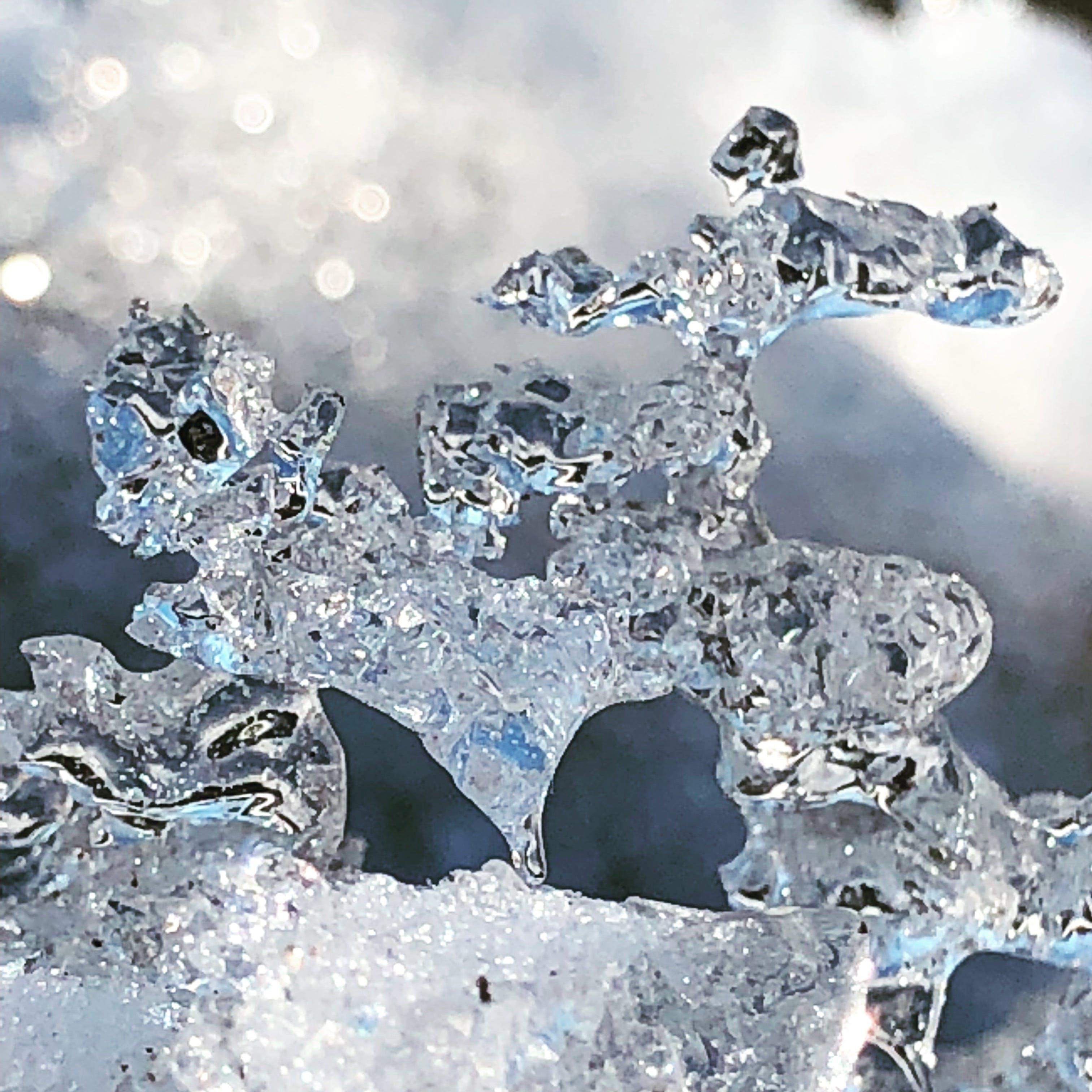 Základová fotografie zdarma na téma led, ledová socha, minnesota, rýma