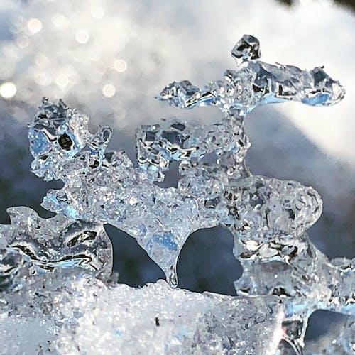 Gratis lagerfoto af forkølelse, is, isskulptur, minnesota
