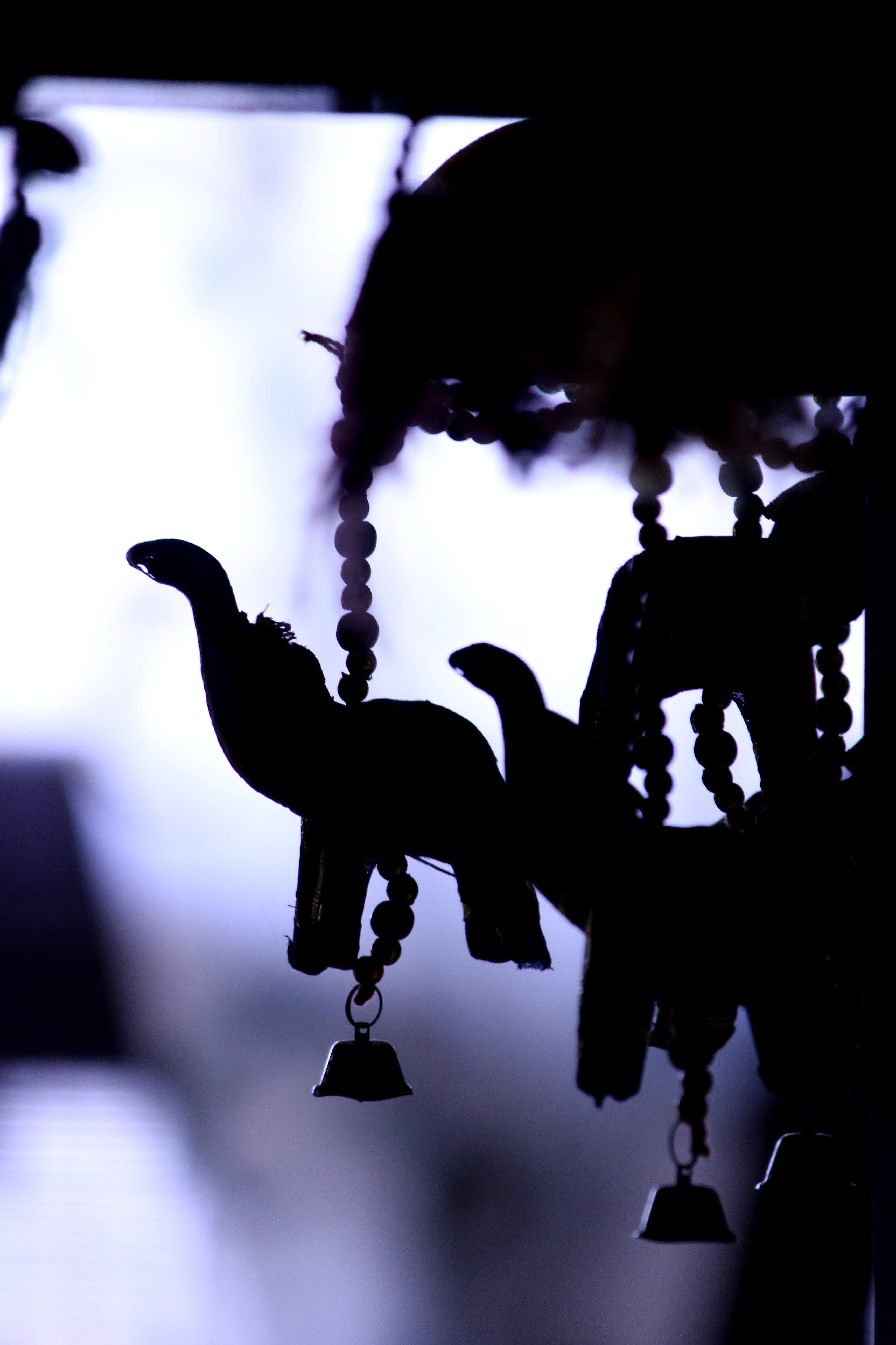 Silhouette Of Hanging Decors