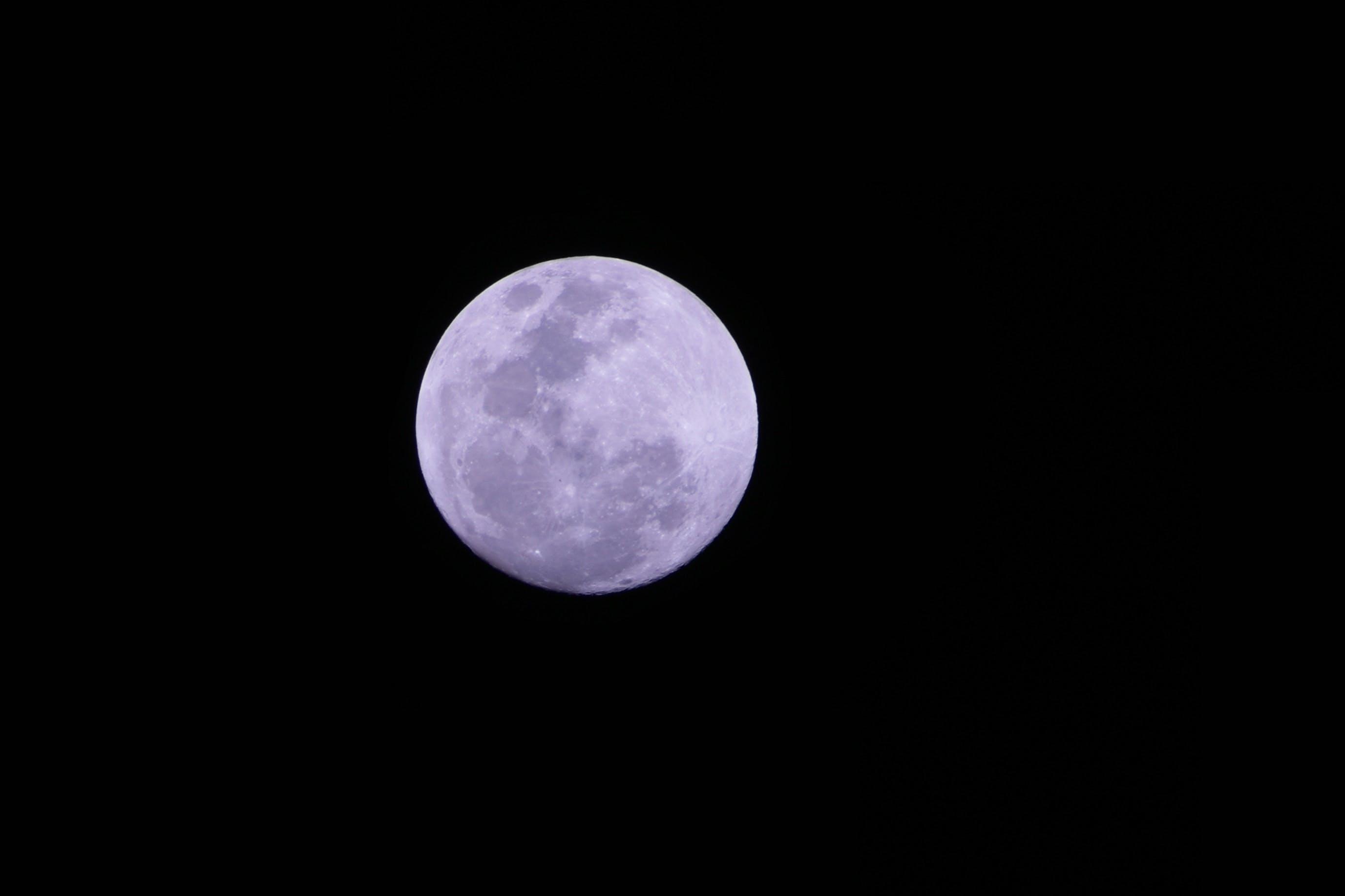 Free stock photo of astrophotography, moon, nikon