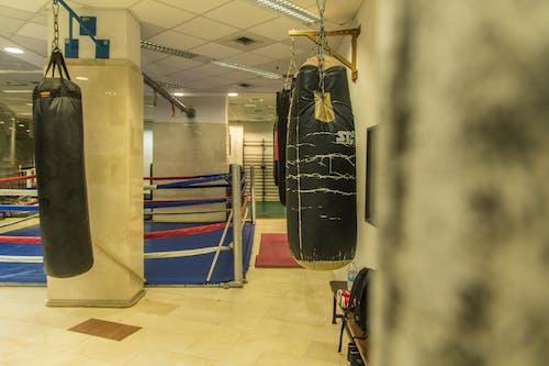 Безкоштовне стокове фото на тему «пробиваючи мішки, тренажерний зал боксу»