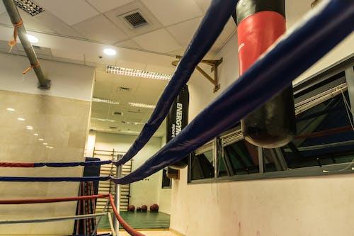 Безкоштовне стокове фото на тему «боксерська груша, займається боксом, мотузки, спортзал»