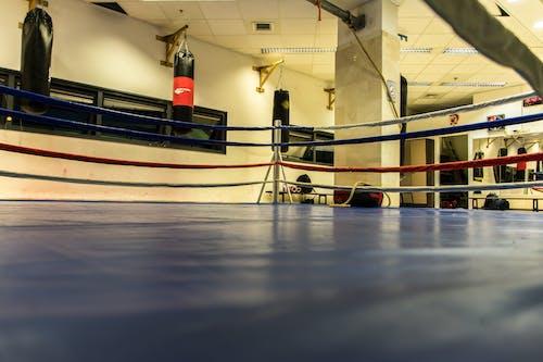 Безкоштовне стокове фото на тему «боксерський ринг, займається боксом, спортзал»