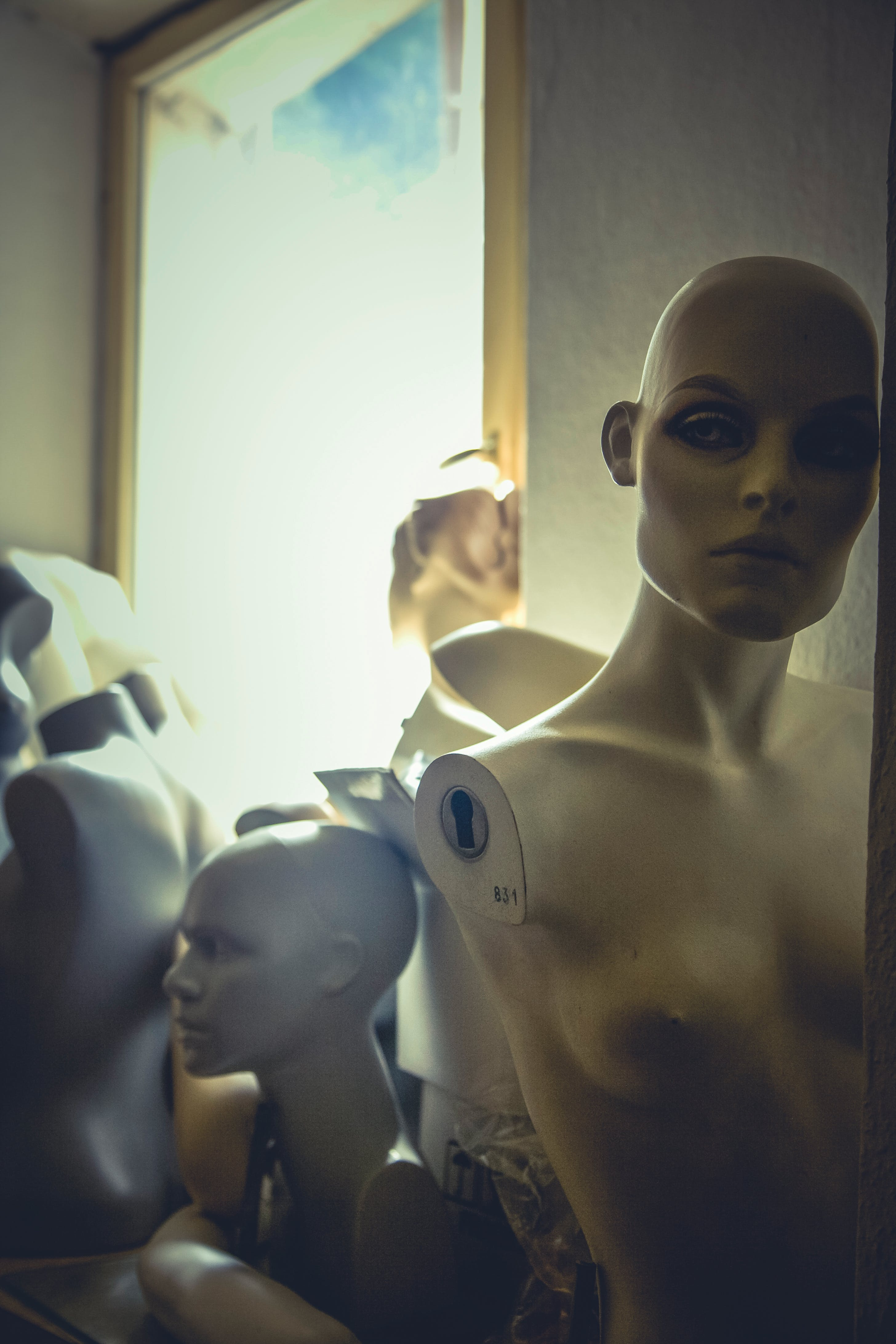 robot, women