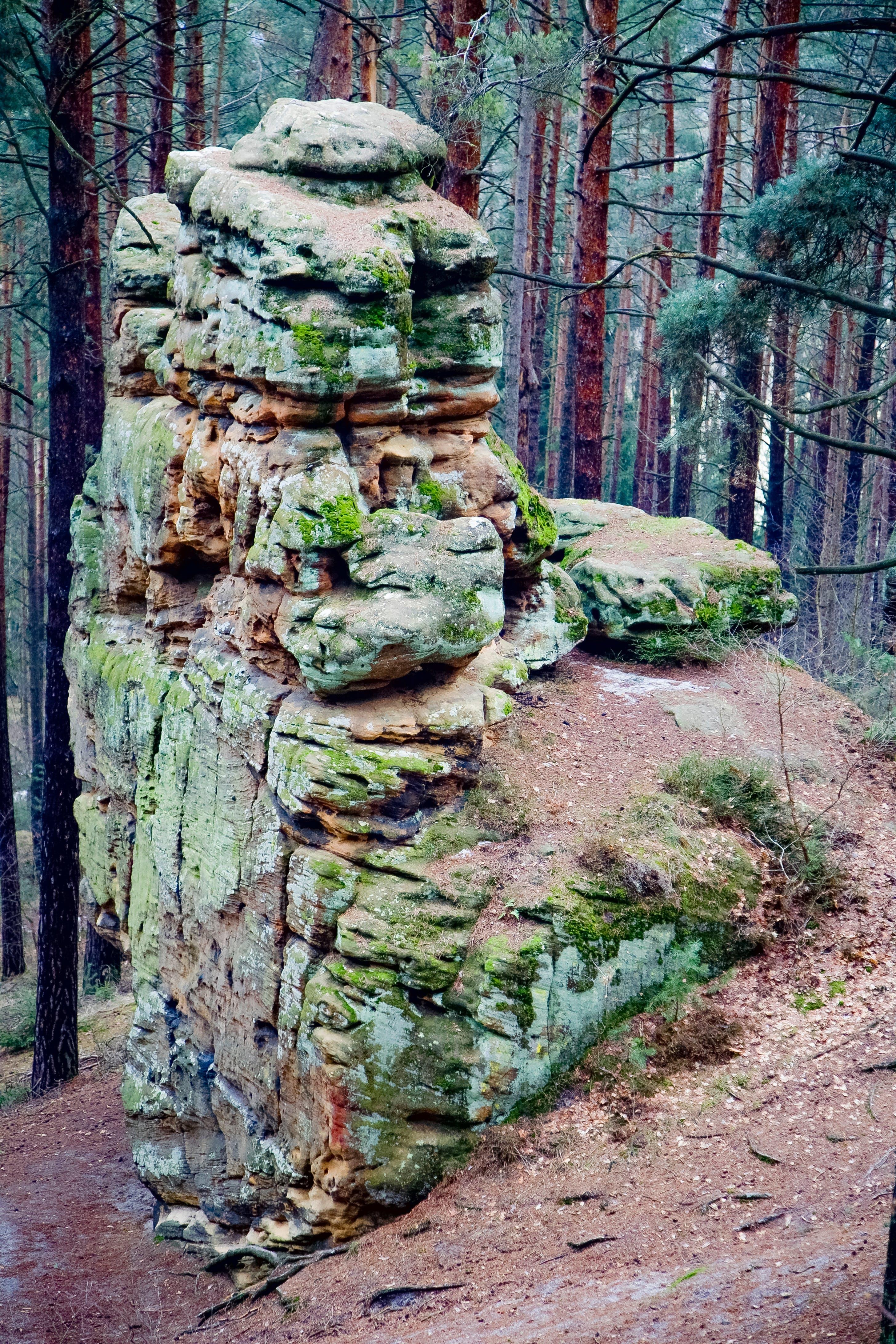 Foto stok gratis alam, batu, bebatuan, hijau