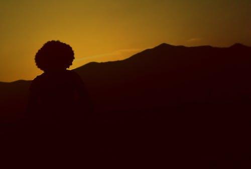 Kostenloses Stock Foto zu ausflug, freund, liebe, natur