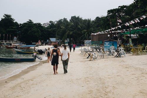 交通系統, 休閒, 假期, 夏天 的 免費圖庫相片