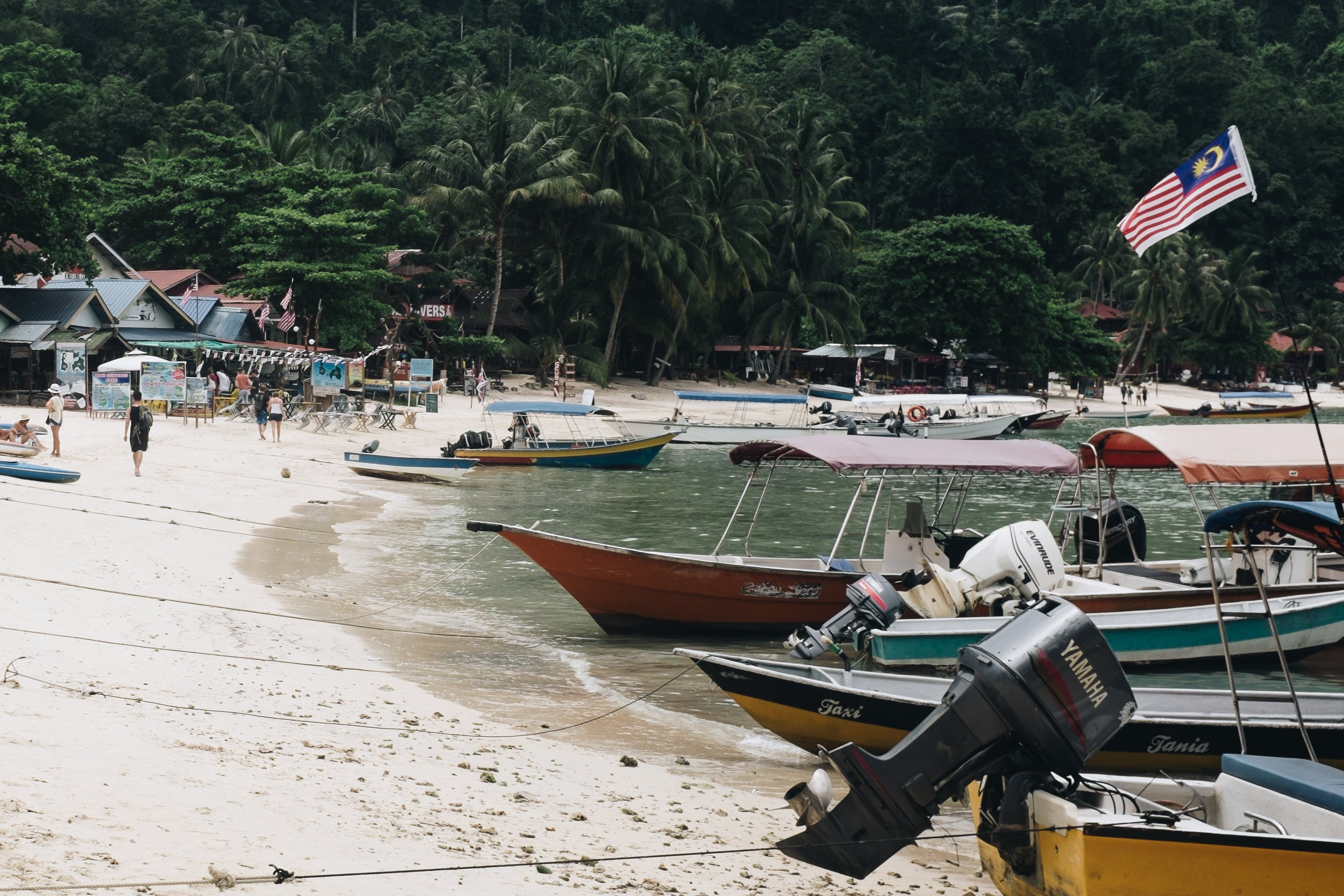 Foto d'estoc gratuïta de aigua, arbres, badia, barques