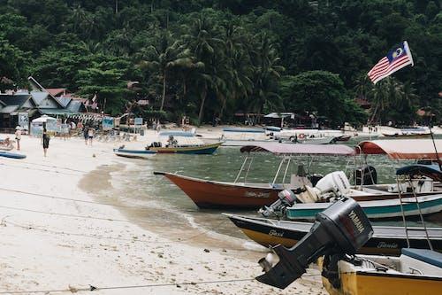 Ilmainen kuvapankkikuva tunnisteilla ajoneuvo, elämä rannalla, hiekka, hiekkaranta