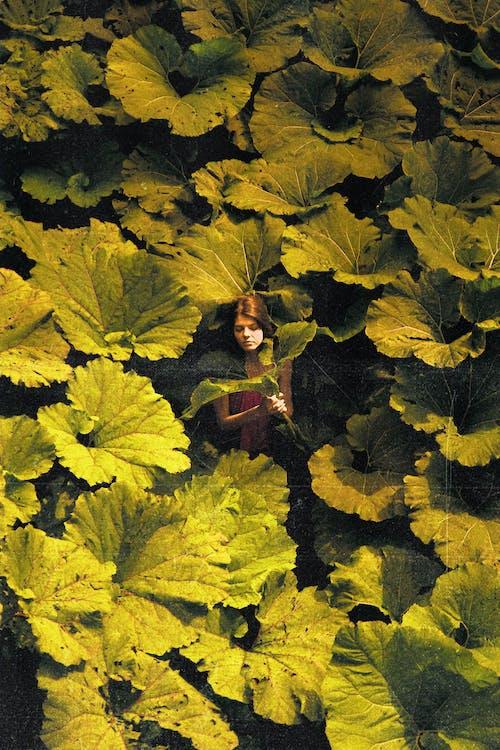 Girl among plants