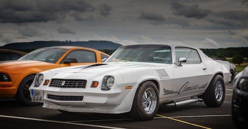 汽車, 福特野馬, 福特野馬 Shelby, 肌肉車 的 免費圖庫相片