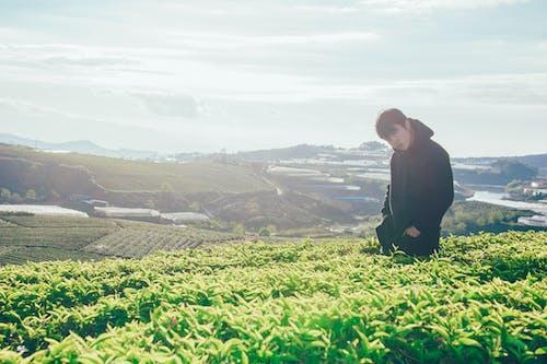 Základová fotografie zdarma na téma chlapec, denní světlo, farma, hora