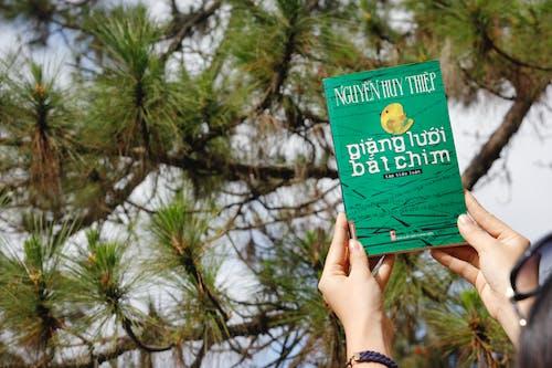 モミ, 休暇, 木, 本の無料の写真素材