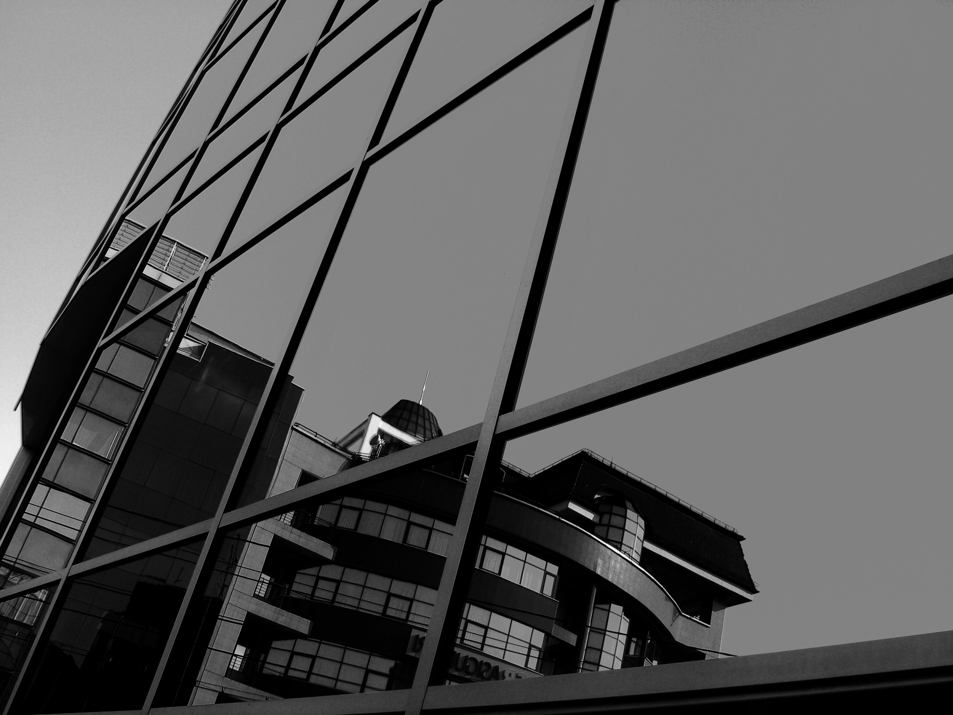 Grayscale Photo Of Glass Curtain Building