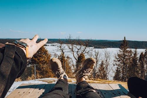 享受, 人, 休閒, 公園 的 免费素材照片