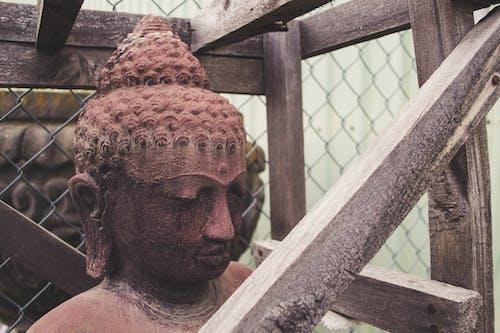 Fotos de stock gratuitas de Buda, escultura, estatua