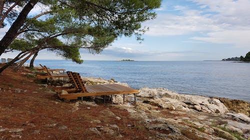 Základová fotografie zdarma na téma relax, svátek, u moře, záliv