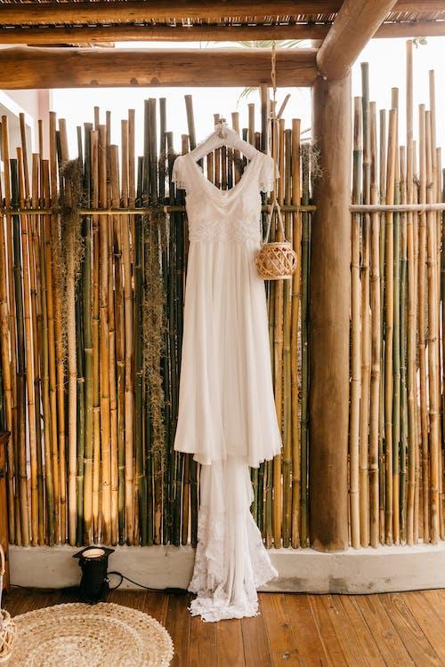 Бесплатное стоковое фото с бамбук, белый, в ожидании