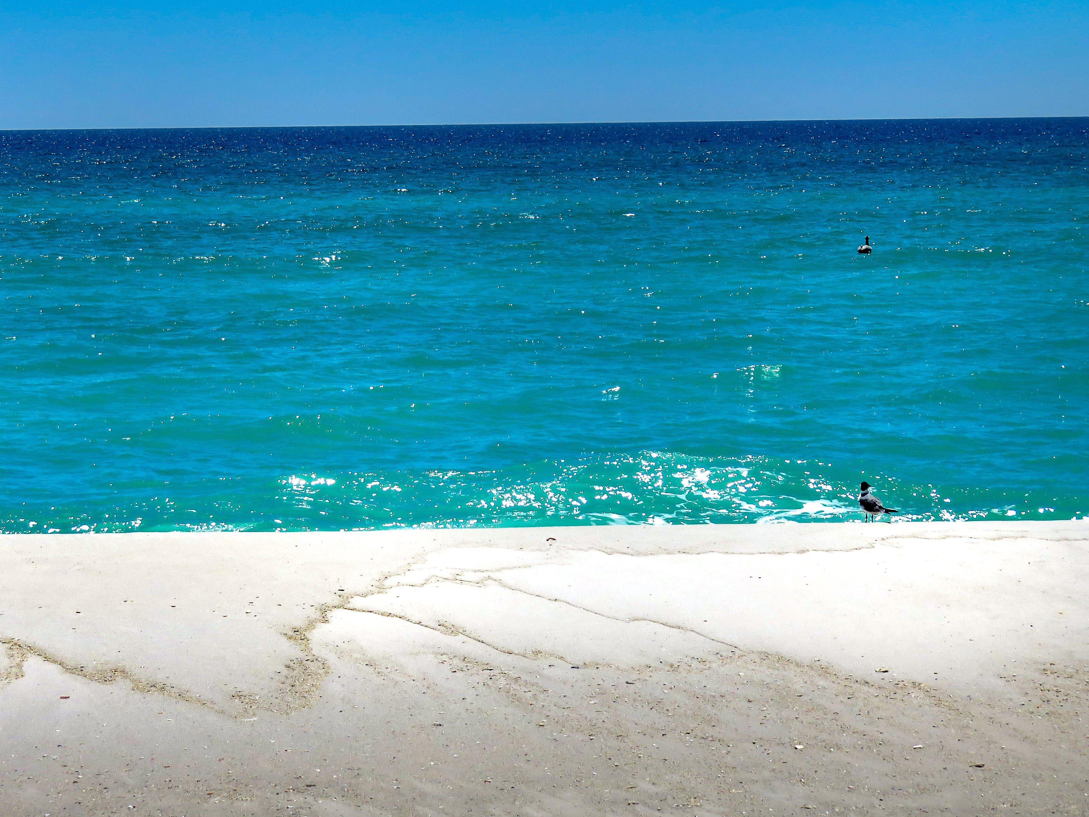 Free stock photo of beach, florida, outdoors, Pensacola