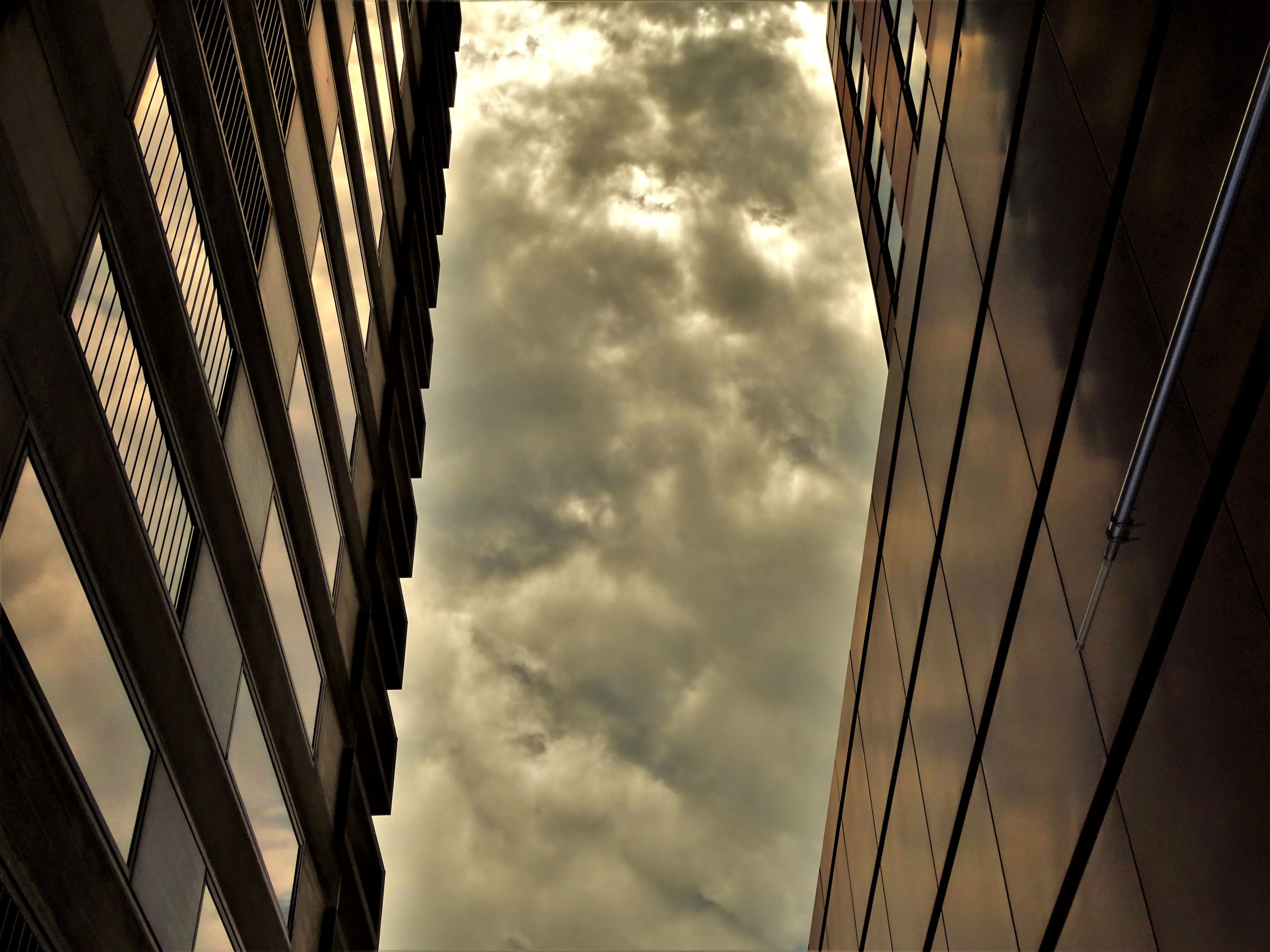 Low Angle of Brown High-rise Building