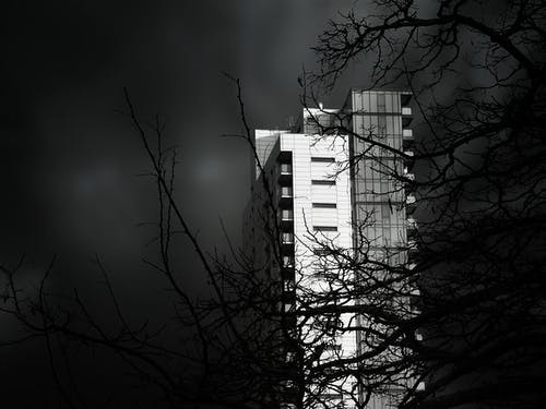 ağaç, akşam, bina, çevre içeren Ücretsiz stok fotoğraf