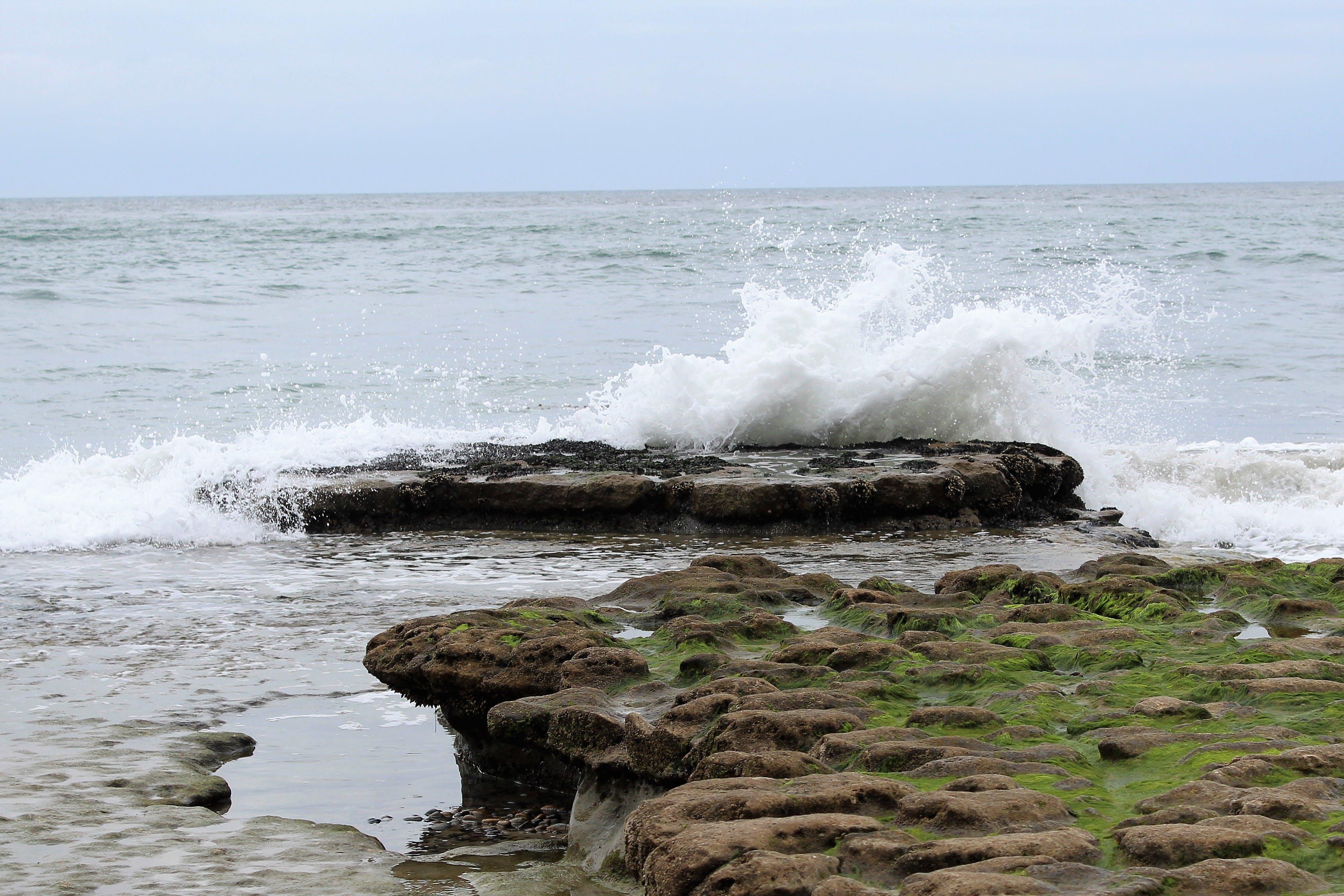 Kostenloses Stock Foto zu strand, surfen, welle, wellenbrechen