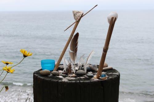 Fotobanka sbezplatnými fotkami na tému okruhliaky, perá, pláž