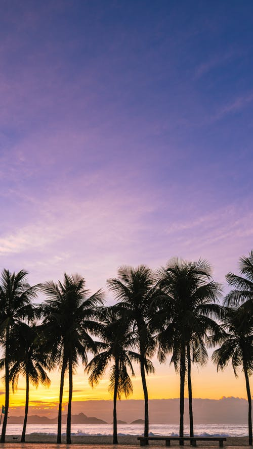 Photos gratuites de bord de mer, côte, coucher de soleil