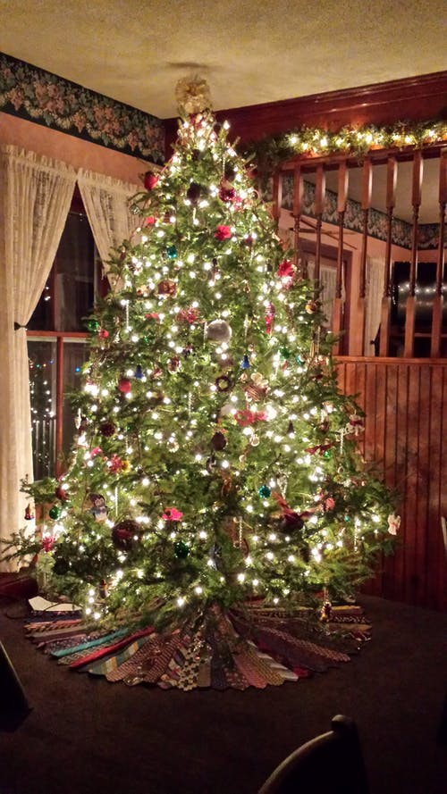 Free stock photo of Best Christmas tree ever, christmas 2016, christmas tree, Holidays 2016