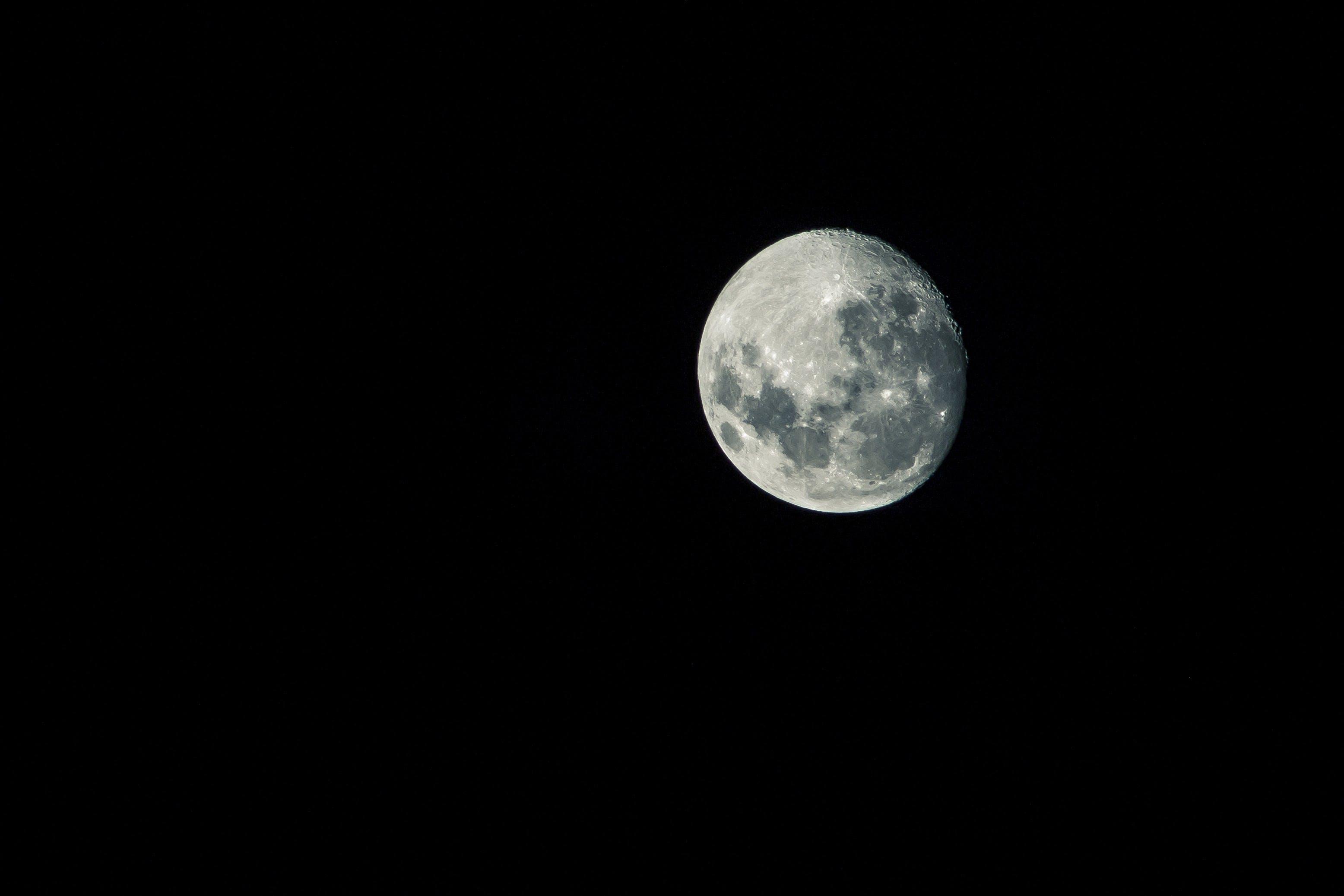 Free stock photo of midnight, moon, moon landing, moonlight