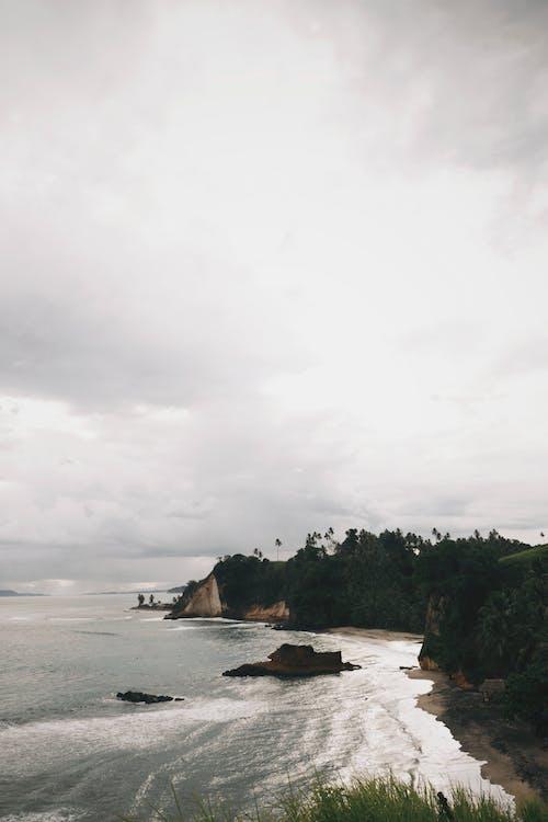 ağaçlar, altın saat, beyaz, bulut içeren Ücretsiz stok fotoğraf