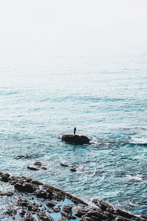 Gratis arkivbilde med bølger, dagslys, fiske, hav