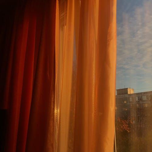 Безкоштовне стокове фото на тему «Windows, апельсин, вертикальний»