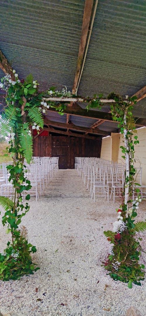 Free stock photo of wedding reception