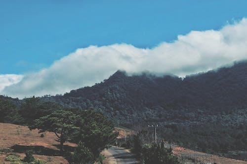 Gratis lagerfoto af agerjord, bakke, bjerg, bjerge
