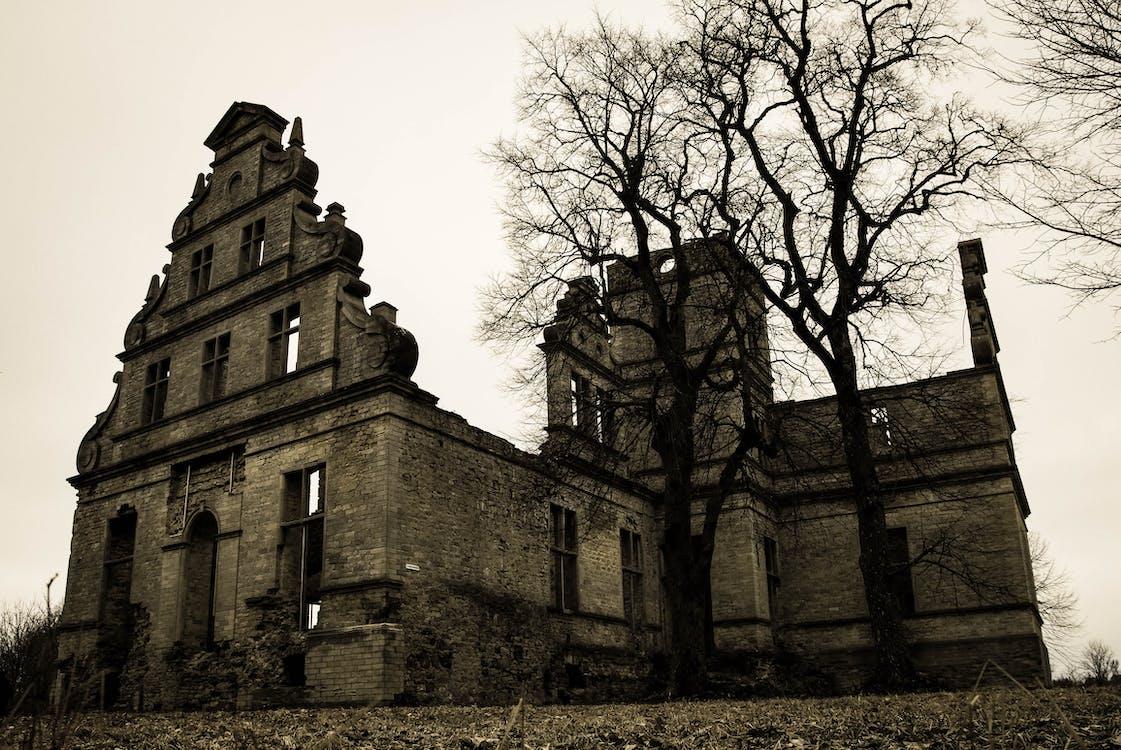 abandonado, arboles, arquitectura