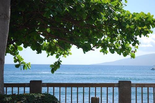 Δωρεάν στοκ φωτογραφιών με θέα στον ωκεανό