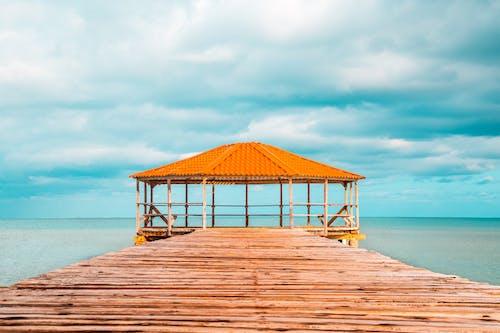 Безкоштовне стокове фото на тему «апельсин, безтурботний, берег моря, відпустка»